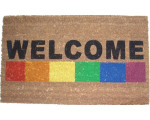 firstunitedwelcomematrainbow